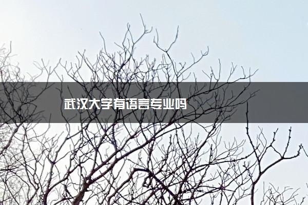 武汉大学有语言专业吗