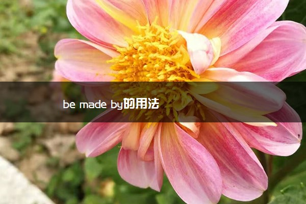 be made by的用法