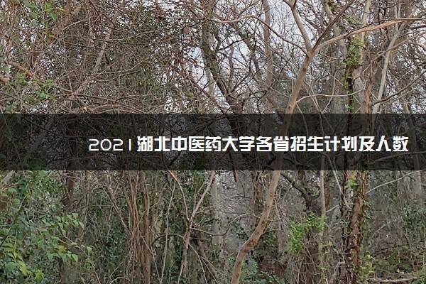 2021湖北中医药大学各省招生计划及人数