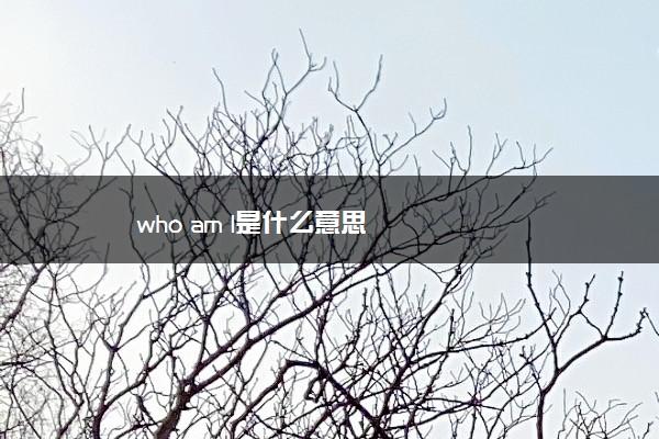 who am l是什么意思