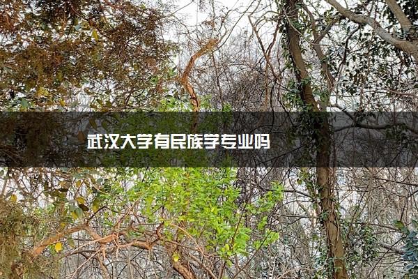 武汉大学有民族学专业吗