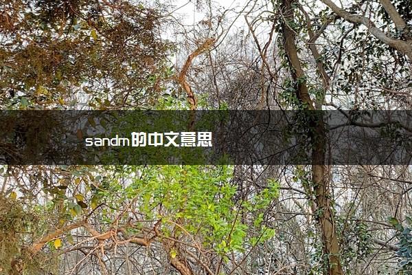 sandm的中文意思