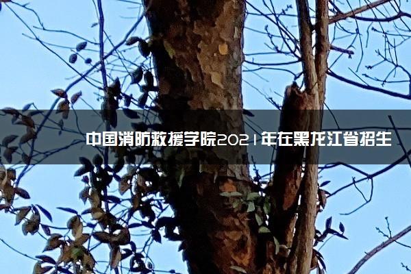 中国消防救援学院2021年在黑龙江省招生计划及人数