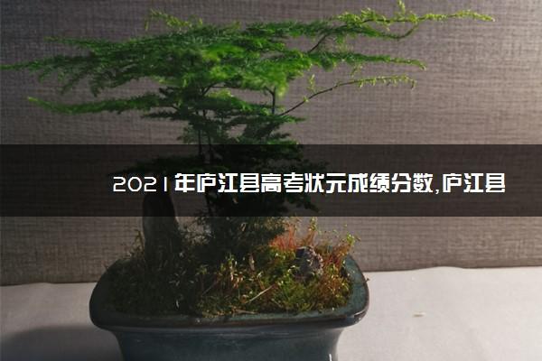 2021年庐江县高考状元成绩分数,庐江县历年高考状元名单