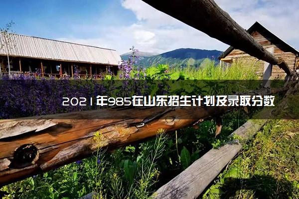 2021年985在山东招生计划及录取分数线