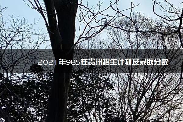 2021年985在贵州招生计划及录取分数线