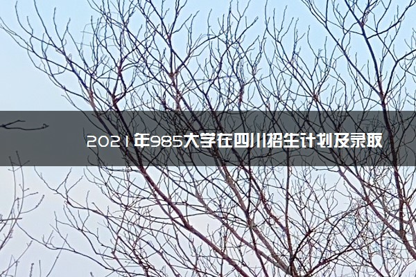 2021年985大学在四川招生计划及录取分数线