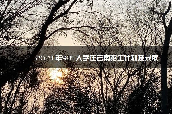 2021年985大学在云南招生计划及录取分数线