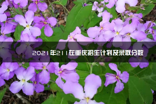2021年211在重庆招生计划及录取分数线