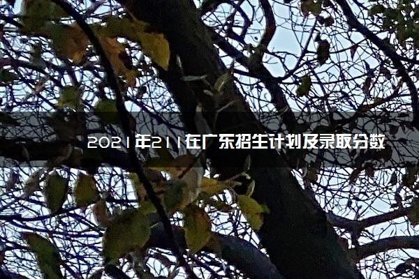 2021年211在广东招生计划及录取分数线