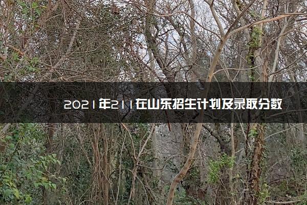 2021年211在山东招生计划及录取分数线