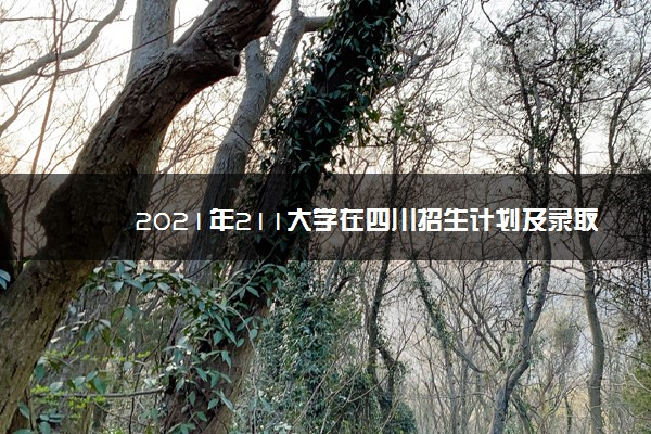 2021年211大学在四川招生计划及录取分数线