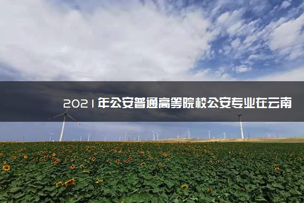 2021年公安普通高等院校公安专业在云南招生计划及人数