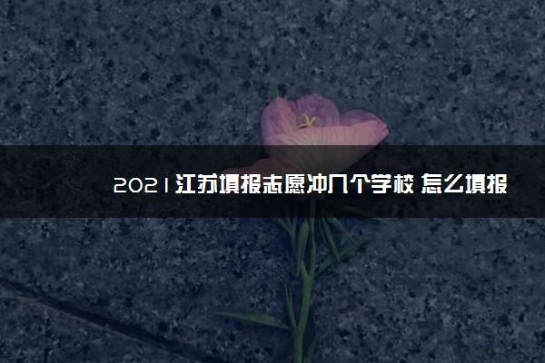 2021江苏填报志愿冲几个学校 怎么填报好