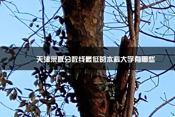 天津录取分数线最低的本科大学有哪些