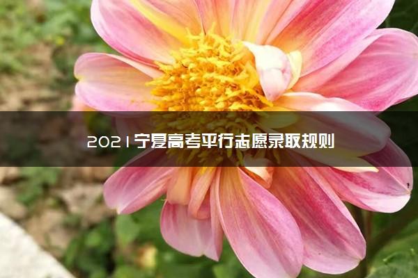2021宁夏高考平行志愿录取规则
