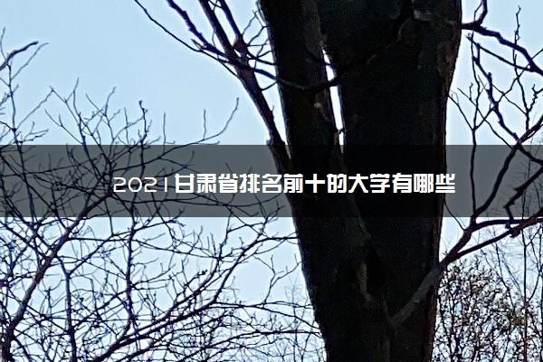 2021甘肃省排名前十的大学有哪些