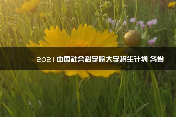 2021中国社会科学院大学招生计划 各省招生人数是多少
