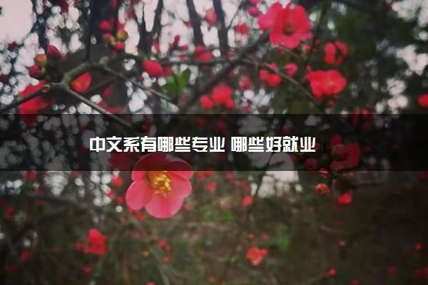 中文系有哪些专业 哪些好就业