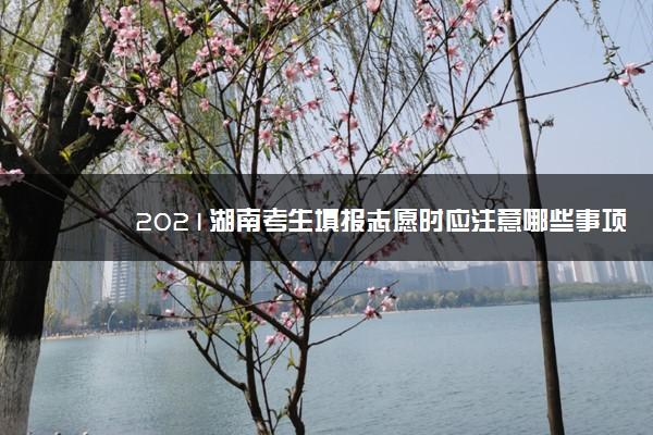2021湖南考生填报志愿时应注意哪些事项