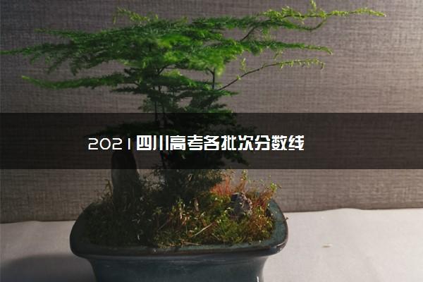 2021四川高考各批次分数线