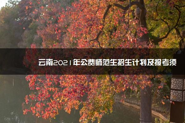 云南2021年公费师范生招生计划及报考须知