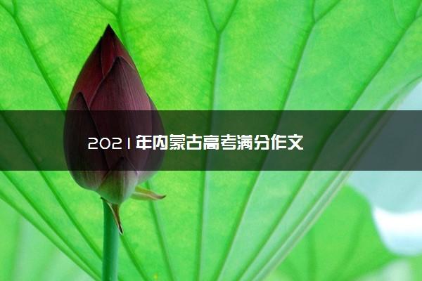 2021年内蒙古高考满分作文