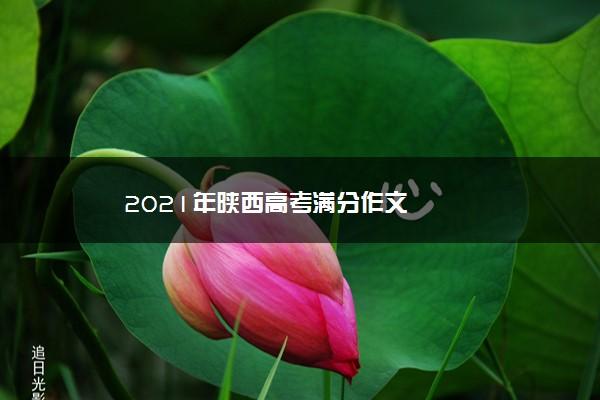 2021年陕西高考满分作文