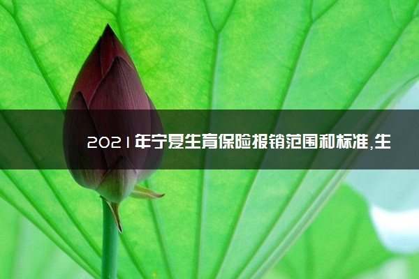 2021年宁夏生育保险报销范围和标准,生育险报销流程多少钱