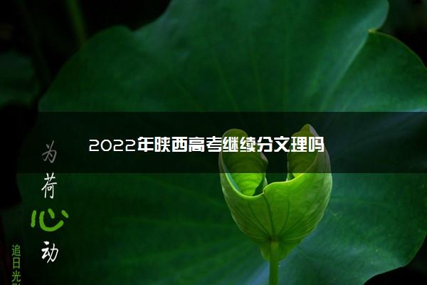 2022年陕西高考继续分文理吗