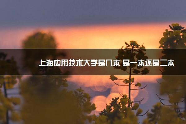 上海应用技术大学是几本 是一本还是二本