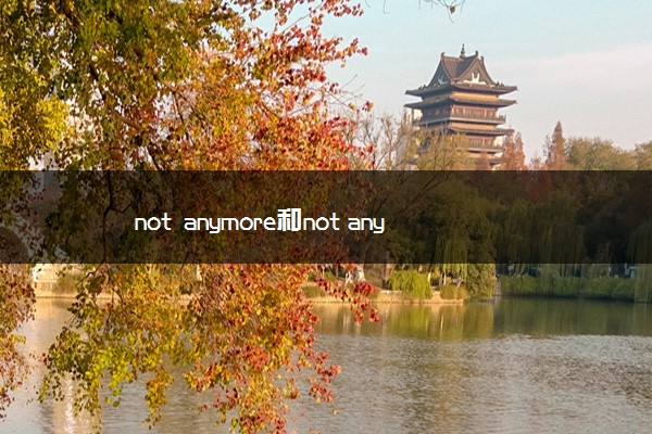 not anymore和not any more的区别