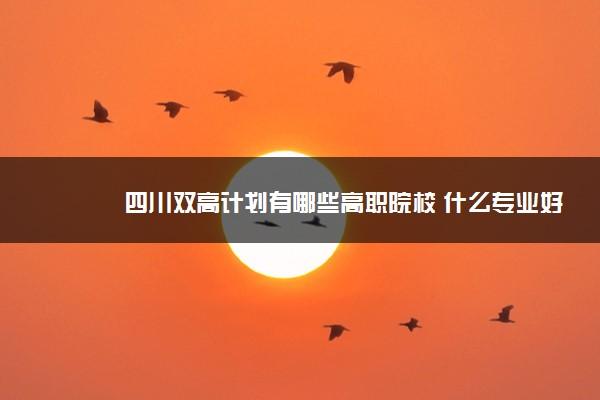 四川双高计划有哪些高职院校 什么专业好