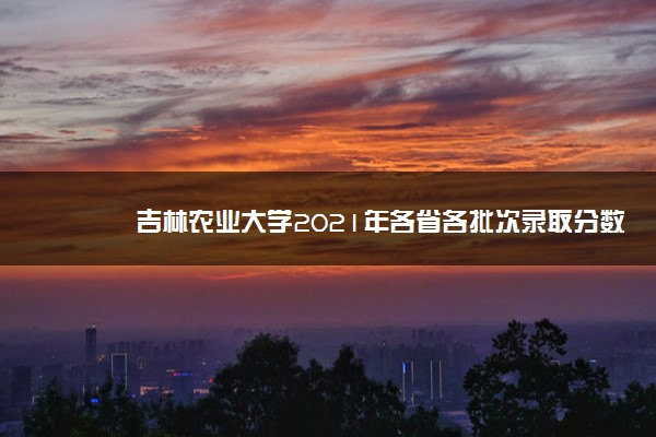 吉林农业大学2021年各省各批次录取分数线