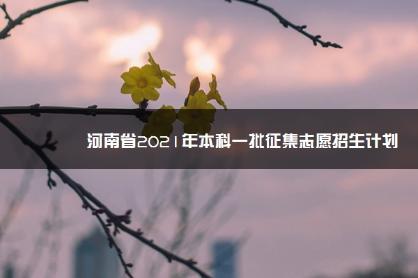河南省2021年本科一批征集志愿招生计划