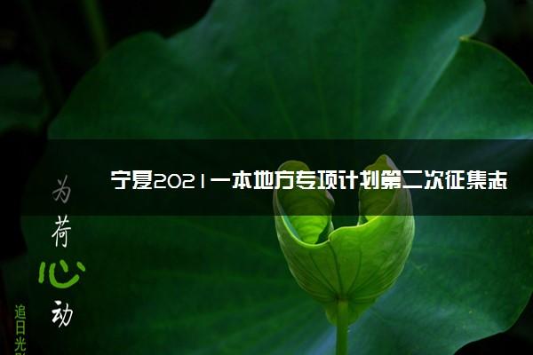 宁夏2021一本地方专项计划第二次征集志愿计划