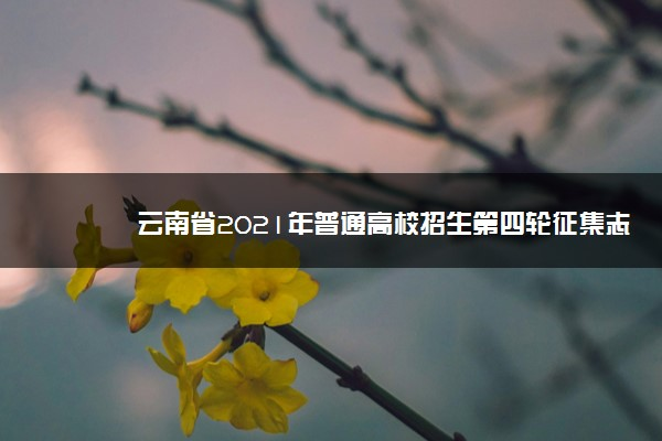 云南省2021年普通高校招生第四轮征集志愿招生计划