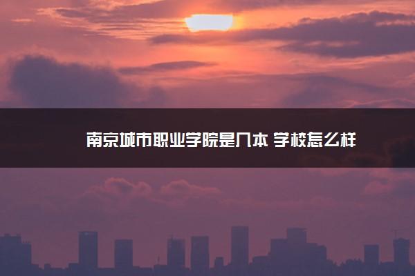 南京城市职业学院是几本 学校怎么样
