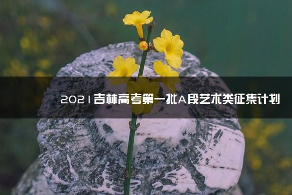 2021吉林高考第一批A段艺术类征集计划(第三轮)