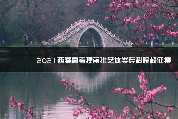 2021西藏高考提前批艺体类专科院校征集志愿计划