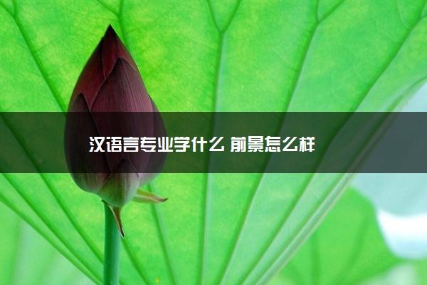 汉语言专业学什么 前景怎么样