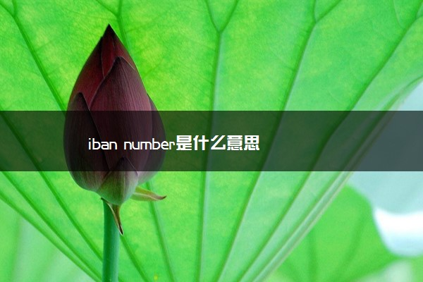iban number是什么意思