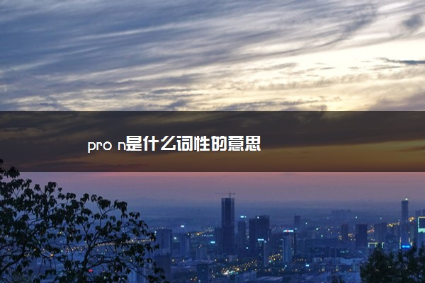 pro n是什么词性的意思