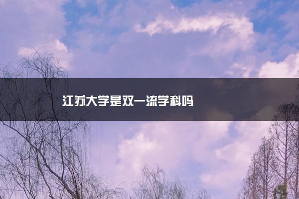 江苏大学是双一流学科吗