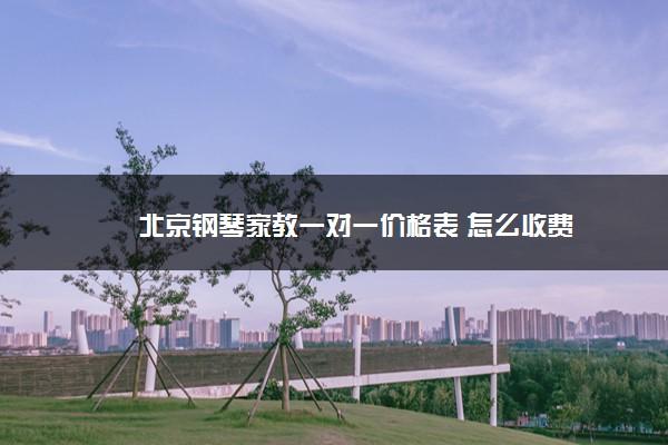 北京钢琴家教一对一价格表 怎么收费