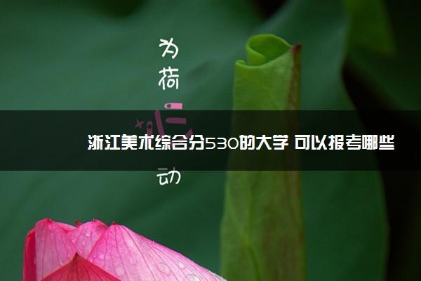 浙江美术综合分530的大学 可以报考哪些院校