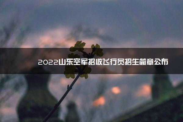 2022山东空军招收飞行员招生简章公布