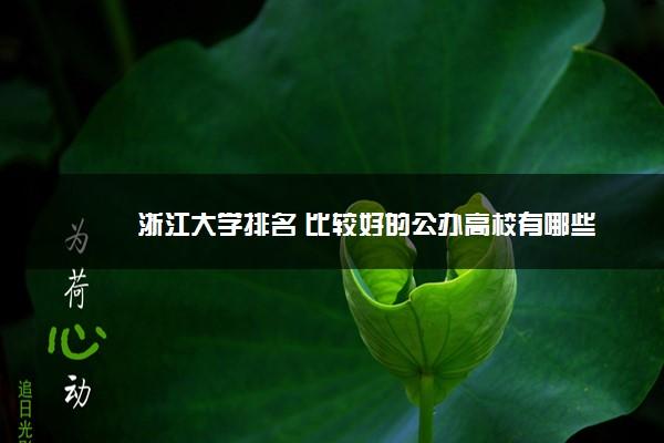 浙江大学排名 比较好的公办高校有哪些