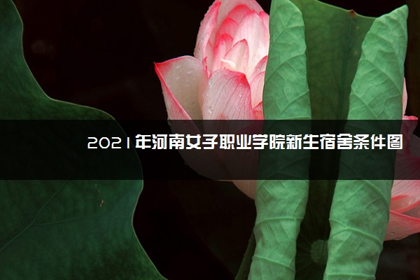 2021年河南女子职业学院新生宿舍条件图片环境怎么样,有独立卫生间吗