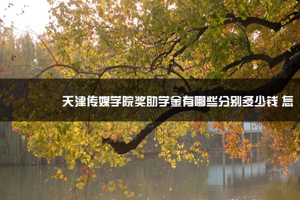 天津传媒学院奖助学金有哪些分别多少钱 怎么申请评定